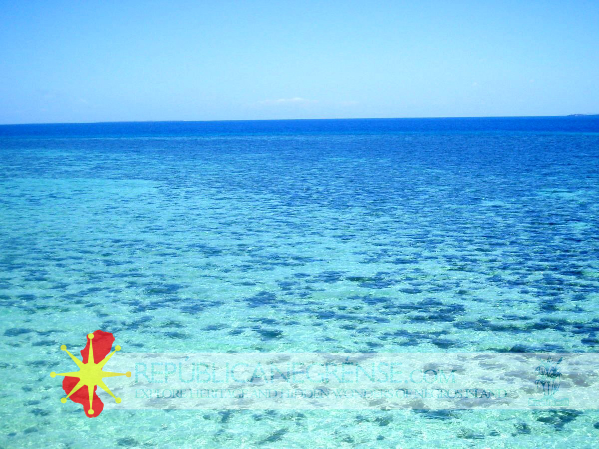 Sunny Hours At The Coast In Carbin Reef